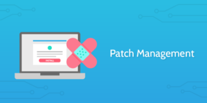 What exactly do you expect when you say Patch Management?
